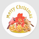 Cardenales del navidad pegatinas redondas
