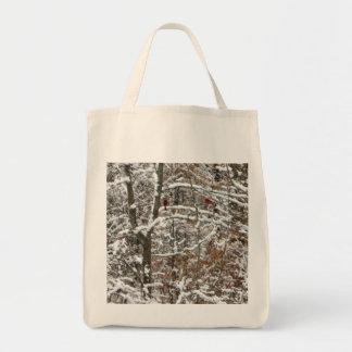 Cardenales en árbol bolsa