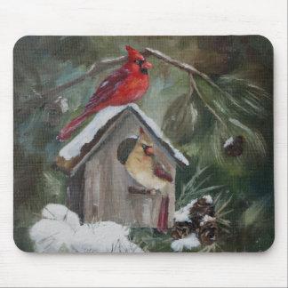 Cardenales en el Birdhouse Nevado Tapetes De Raton