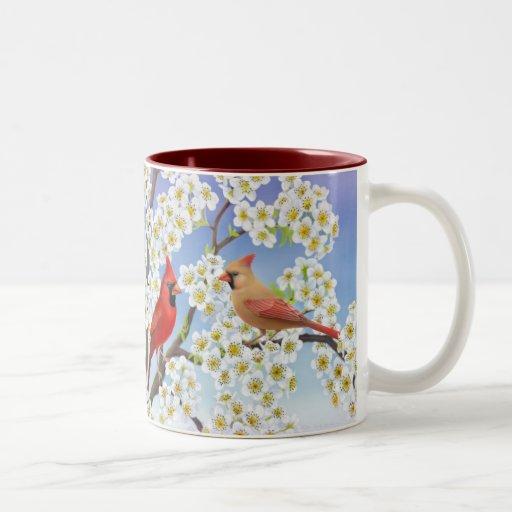 Cardenales en el florecimiento de la taza del manz
