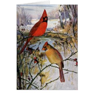 Cardenales en invierno felicitación
