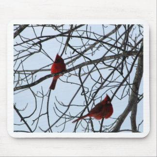 Cardenales en un árbol tapetes de ratón