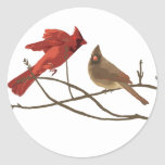 Cardenales rojos festivos etiquetas