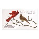 Cardenales rojos festivos plantillas de tarjetas de visita