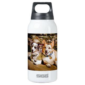 Cardigan and Pembroke Welsh Corgi Toon 10 Oz Insulated SIGG Thermos Water Bottle