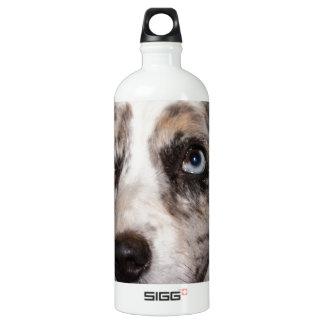Cardigan Welsh Corgi/Blue Merle SIGG Traveler 1.0L Water Bottle