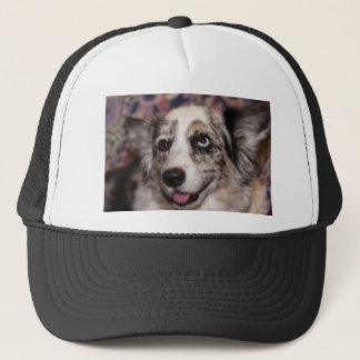 Cardigan Welsh Corgi/Blue Merle Trucker Hat