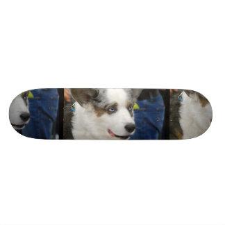 Cardigan Welsh Corgi Dog Skateboard
