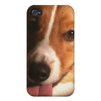 Cardigan Welsh Corgi iPhone 4 Case
