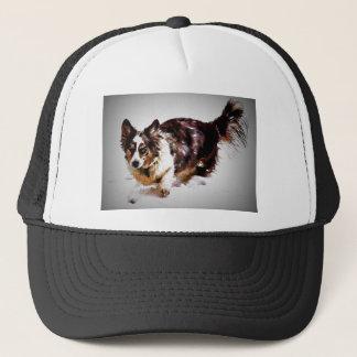 Cardigan Welsh Corgi - Maggie Trucker Hat
