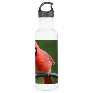 Cardinal 24oz Water Bottle