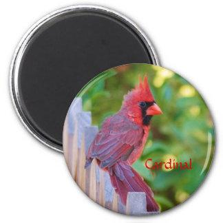 Cardinal 2 Inch Round Magnet