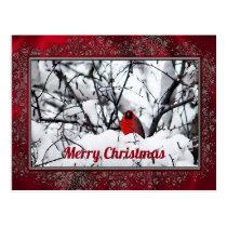 Cardinal 6211 Frame Christmas Postcard