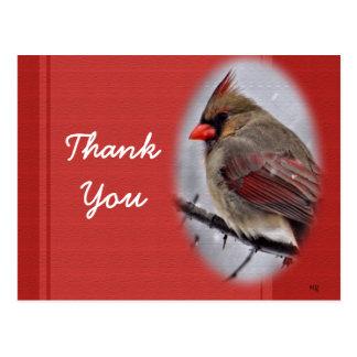 Cardinal 9190-1 Postcard- customize as desired Postcard