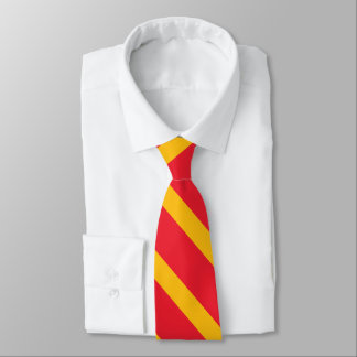 Cardinal and Gold II University Stripe Tie