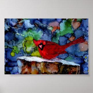 Cardinal At Night Poster
