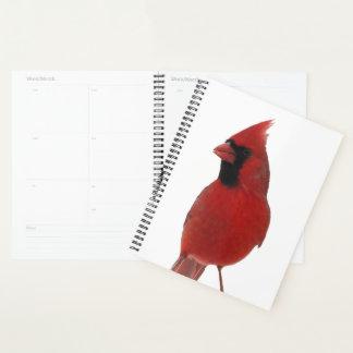 Cardinal Bird Animal Nature Planner