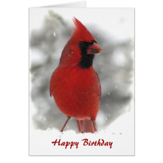 Cardinal Bird Birthday Card