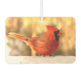 Cardinal Bird in Autumn Air Freshener