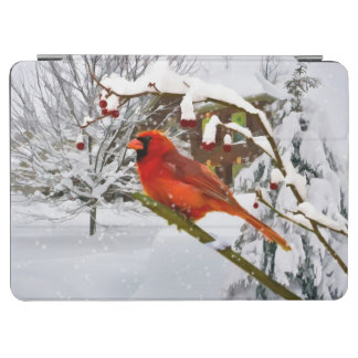 Cardinal Bird in the Snow iPad Air Cover