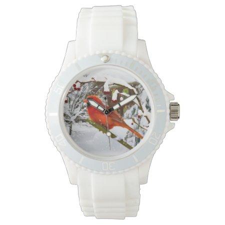 Cardinal Bird In The Snow Watch