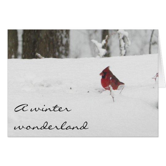 Cardinal Bird in the Winter Snow Card