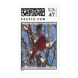 Cardinal Bird in Winter Postage Stamps