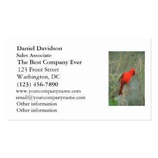 Cardinal Bird Photo Business Card