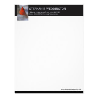 Cardinal bird photo letterhead