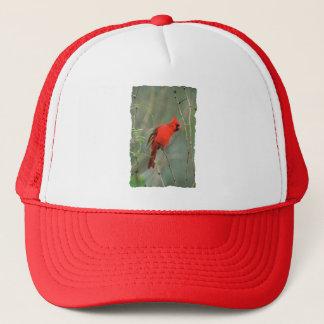 Cardinal Bird Photo Trucker Hat
