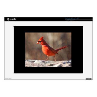 """Cardinal Bird Skins For 15"""" Laptops"""