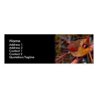 Cardinal Birds Mini Business Card