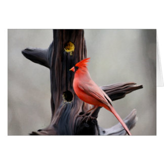 Cardinal Blank Card