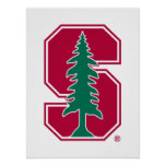 "Cardinal Block ""S"" with Tree 2 Poster"