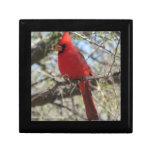 Cardinal Cajas De Joyas