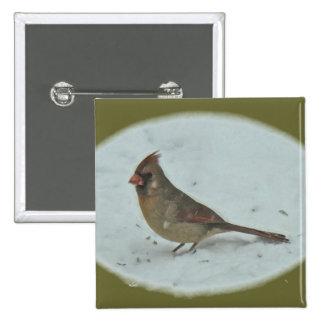 Cardinal (Cardinalis cardinalis) Female Songbird Pinback Button