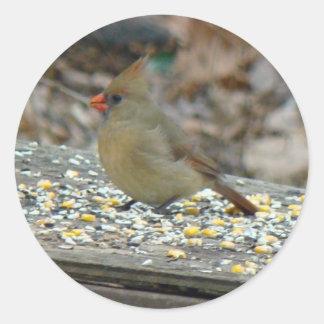 Cardinal (Cardinalis cardinalis) Female Songbird Round Stickers