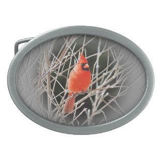 Cardinal Centered Belt Buckle