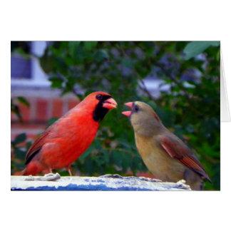 Cardinal Couple Eating Card