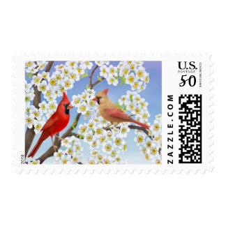 Cardinal Couple in Apple Tree Postage