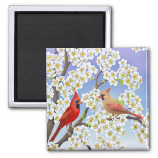 Cardinal Couple in Flowering Tree Magnet