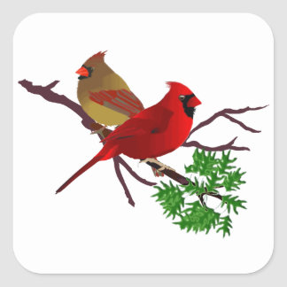 Cardinal Couple on a Branch Square Stickers