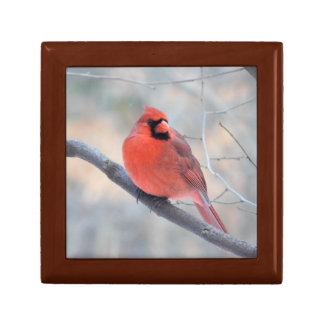 Cardinal Creek Bird's Eye View Gift Box