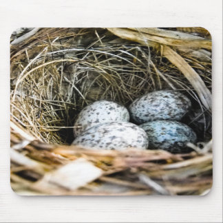 Cardinal Egg Mousepad