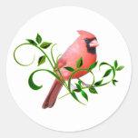 Cardinal Etiqueta