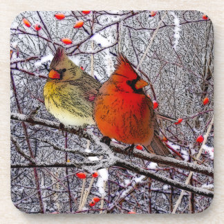 Cardinal Forest Coasters