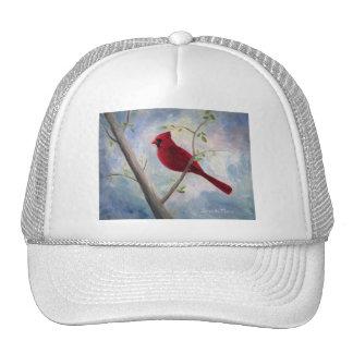 cardinal gorras de camionero