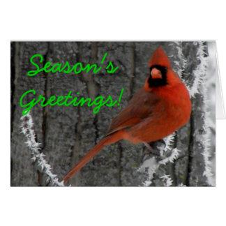 Cardinal Greetings Greeting Cards