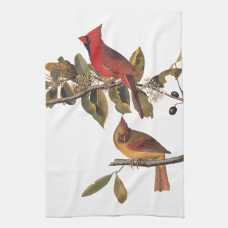 Cardinal Grosbeak Audubon Birds of America Kitchen Towel