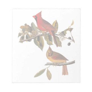 Cardinal Grosbeak Bird Pair Audubon Vintage Art Notepad